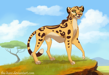 Fuli Redesign by TheVerdantHare