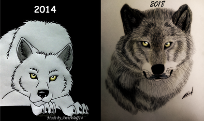 Wolf Drawing - Comparison by ArticWolf14