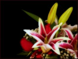 BOUQUET 3 by THOM-B-FOTO