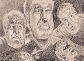 Wolfman Collage by PaulSpatola