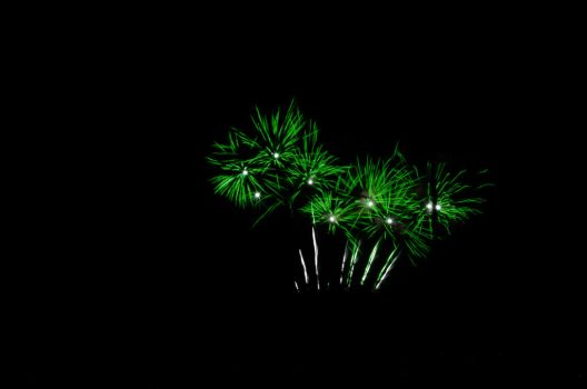 green fireworks (they look like weed) by cooldude2819