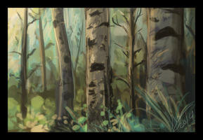 Forest by DawnFrost