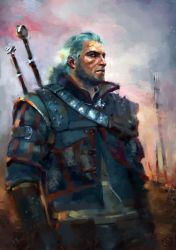 The Witcher by Vangega