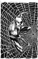 Spider-Man Black by edtadeo