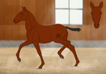 Barroco | Foal Template by CalyArt
