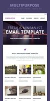 E-Newsletter Email Template by webduckdesign