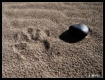 Mark on sand by Evicas