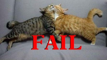 KITTLY FAIL by livelaughlove815