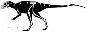 Fruitadens haagororum skeletal reconstruction by ornithischophilia