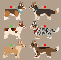 Pembroke and Welsh Corgi adoptables ONE LEFT by Savkate