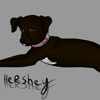Hershey by Demonic-stickfigures