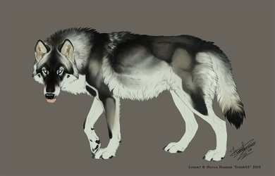 Wolf Adoptable AUCTION - Ended by HannasArtStudio