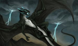 In the Storm by Nalavara