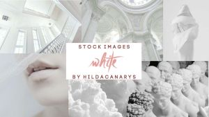 White - Stock Images by hildacanarys