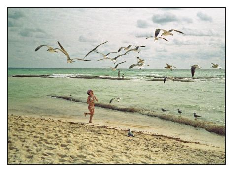 Girl chasing birds.img349, with story by harrietsfriend