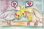 Cockatiel Greeting With Background by pixipatrin
