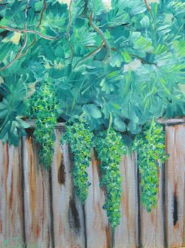 Grapes On The Fence by emwtaylor