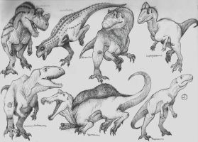 Dinosaur Phylogeny: Non Coelurosaurian Theropods by SaurArch