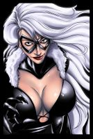 black cat by ashasylum