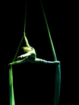 The Green Aerialst by Hilini