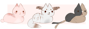 loaf cat adopts auction | open by ryewheat