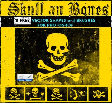 Skull Vector Shapes and Brushes by PsdDude