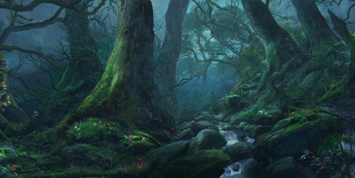 Forest silence by Reinmar84
