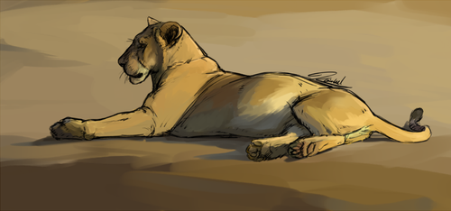 Resting Lioness by kaithel