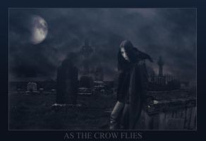 As the Crow Flies by boundfear