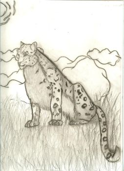Snow leopard by Shadows-reflection