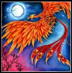 Phoenix by Chelsee