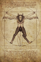 Harry Potter - Vitruvian Werewolf by K-Zlovetch