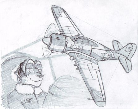 Aircraft by Drake-TigerClaw