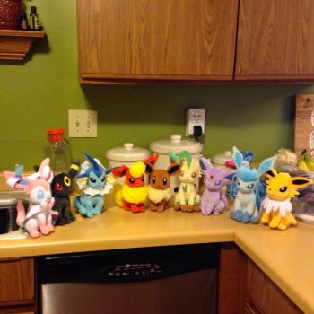 My Eeveelution Plushie Collection by SoEeveelicious