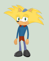 Arnold the Hedgehog by MeredithSGA