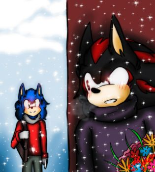Sonic And Shadow LOVE by PiRoG-Art