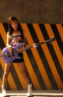 music genres: pretty in punk by paige-dccm