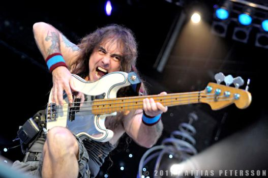 Steve Harris - Iron Maiden by Seroth88
