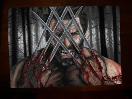 Wolverinemuj by FilaVenom