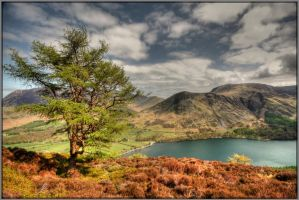 Buttermere by Rebacan