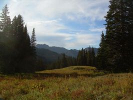 Mountain Meadow by abuseofstock