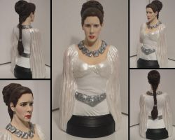 'A New Hope' - Princess Leia Ceremonial Gown Bust by tjjwelch