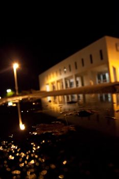 Puddle in Shallow Focus by CurtP