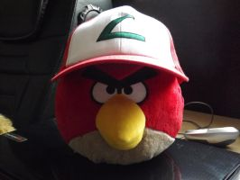 Red Wearing Red's Hat by Collioni69