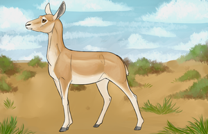 Jasmine - Blackbuck by Biscottimon