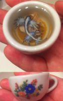 Glaucus Atlanticus in a Teacup by ShadyDarkGirl
