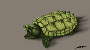 200 - Snapping Turtle by Shasel