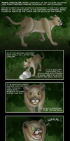 The Majestic Mountain Lion by BeckHop