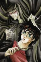 Harry vs. Voldemort by E-f-e-u