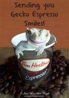EXPRESSO GECKO SMILE by Heather-Chrysalis